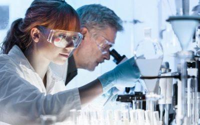 Focus difese immunitarie: melatonina come immunoregolatore